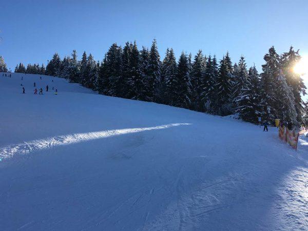 Brandmatt-Winter-24