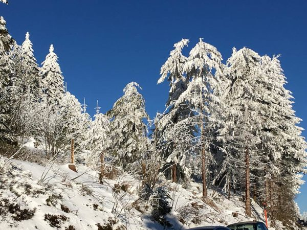Brandmatt-Winter-32