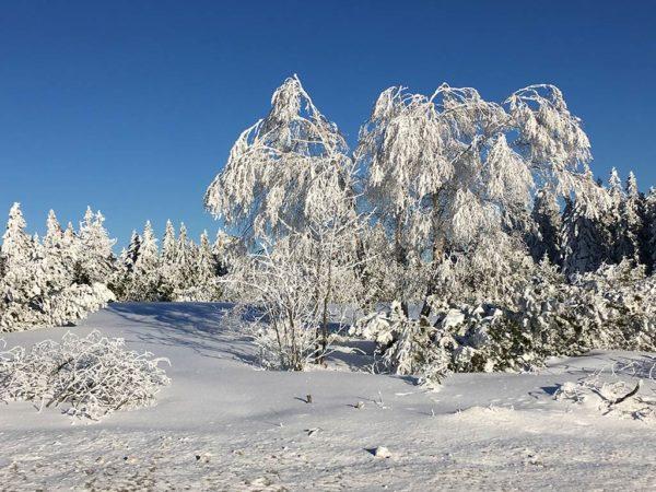 Brandmatt-Winter-37