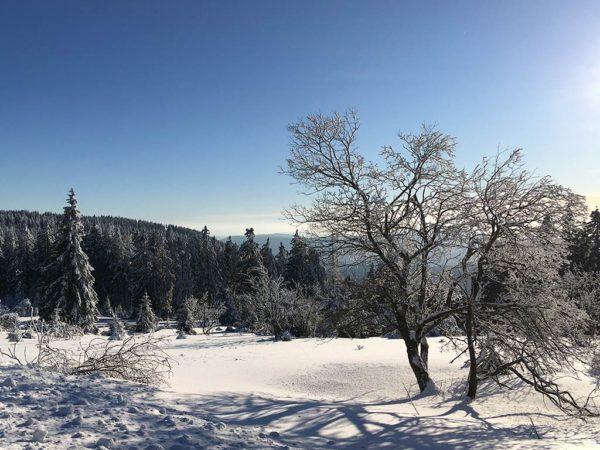 Brandmatt-Winter-39