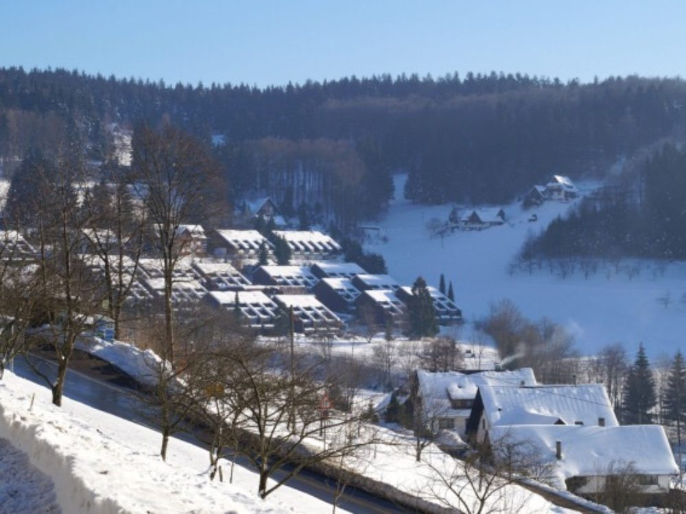 Wohnung-Black-Forest-Nord-4